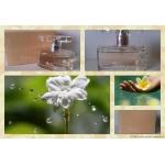 Женская парфюмированная вода Masaki Matsushima Masaki Suu…40ml