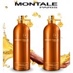 Парфюмированная вода унисекс Montale Orange Aoud 100ml(test)